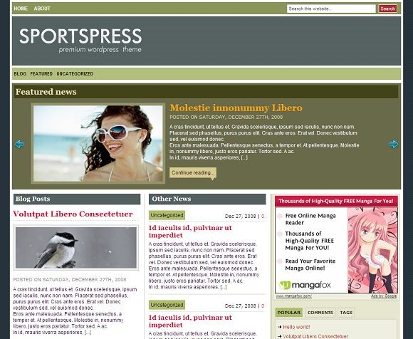 2009 01 16 105048 Free WordPress News Themes to download