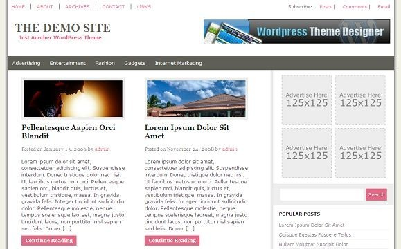 2009 01 17 164050 Free WordPress News Themes to download